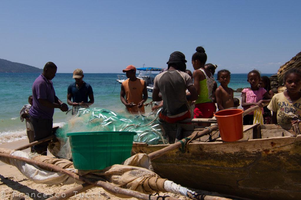 Le famiglie intere a recuperare le sardine dalle reti